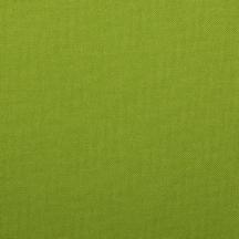 Kona in Lime.