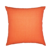 55x55-moleskin-cumquat
